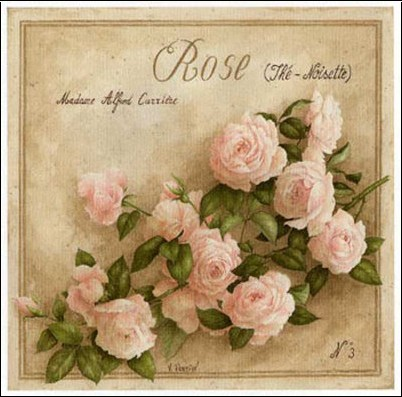 vincent-perriol-rose-the-noisette-n-2109708-0