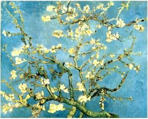 Branche_d'amandier_en_fleur