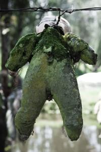 une-mysterieuse-ile-au-mexique-est-peuplee-de-poupees14