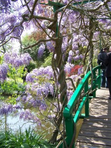 Jardin de Monet, photo Bruno Guédot