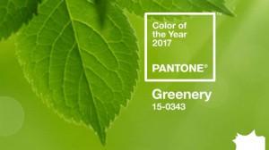 pantonegreneryfb_3C64323B616441E9891A73EA62A9E79B