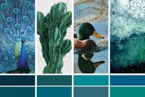 nuancier-bleu-canard-paon