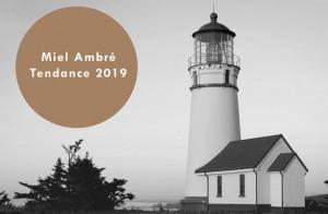 Tendance-2019-Dulux-Miel-Ambré-665x435
